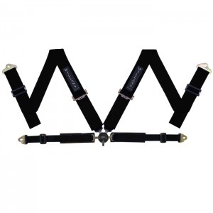 Black FIA Harness