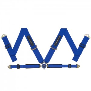Blue FIA Harness